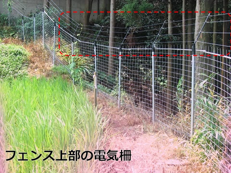 フェンス上部の電気柵