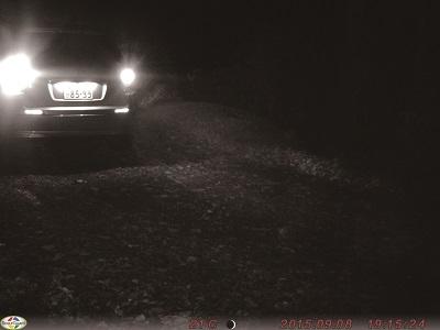 ターゲットスカウト 夜間に撮影②
