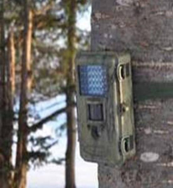 乾電池式防犯カメラのブログ写真⑫